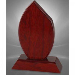 trofeu lemn gravat